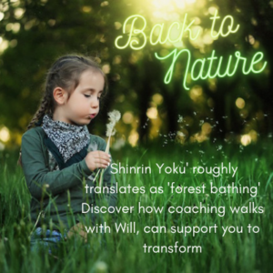 Forest bathing Shinrin Yoku Will Thomas